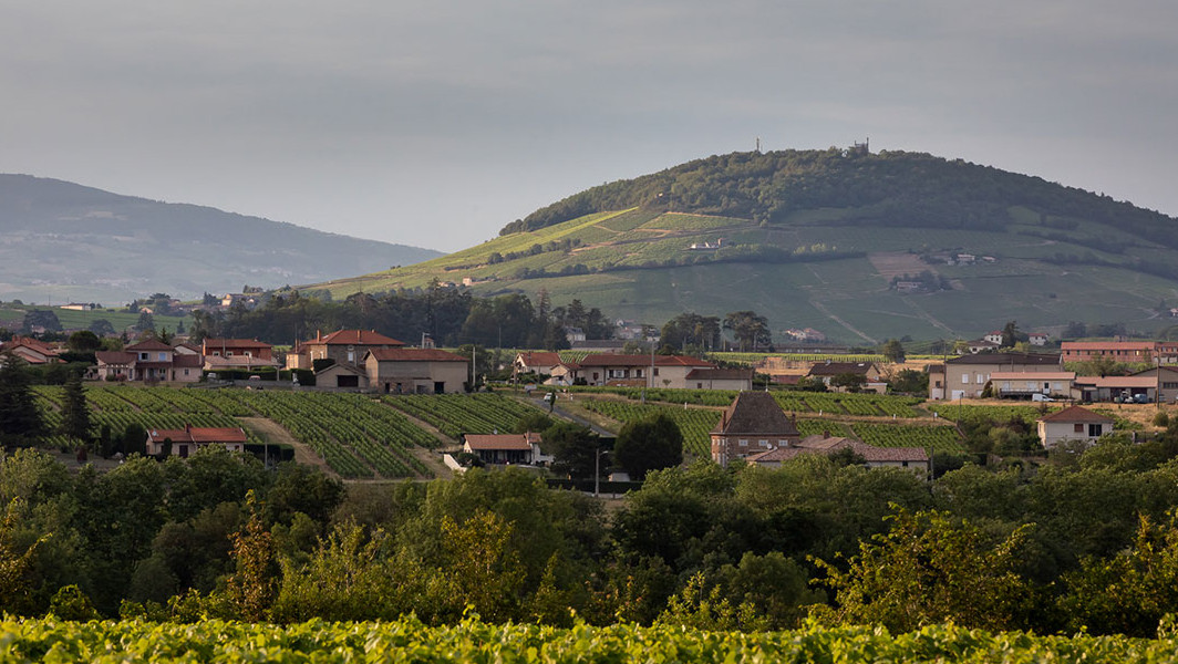 Mont Brouilly - Geopark Beaujolais